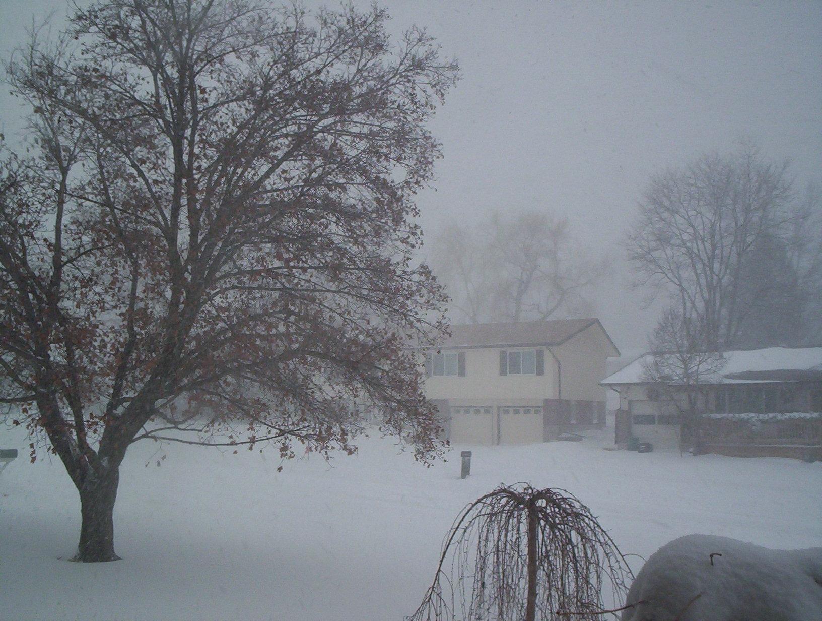 blizzard3.jpg