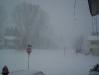 blizzard1.jpg